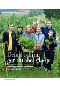 TrädgårdOchBlommor-2012